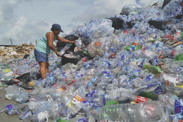 Nueva Zelanda, Chile, Turquía y México, los que menos reciclan